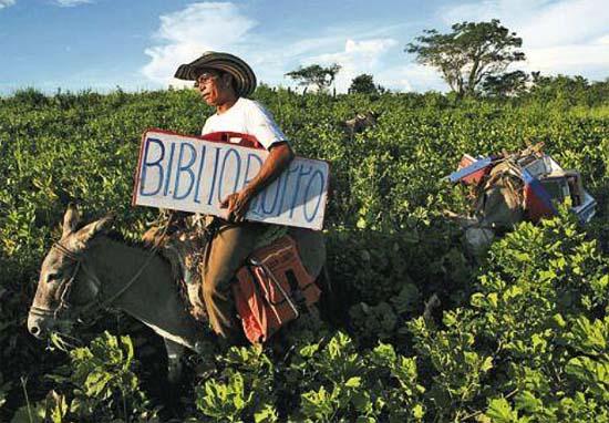 Biblioburros: Luis Soriano, Alfa és Beto