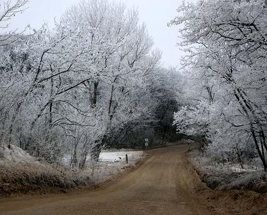 Csömör, Kistarcsa felé vezető földút, 2007 december, nagy havazás után