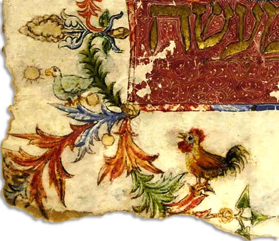 Rooster from the Kaufmann Haggadah