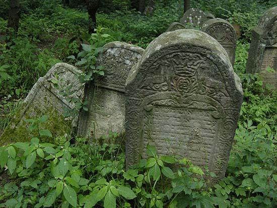 Poemas Del Ro Wang Lesko Jewish Cemetery