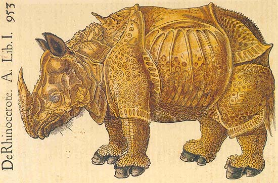 The rhinoceros of Dürer in the Historia animalium of Conrad Gessner, 1551