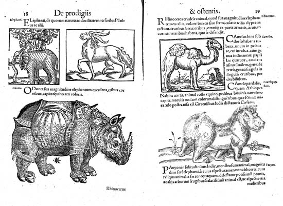 The rhinoceros of Dürer in Conrad Lycosthenes's Prodigiorum ac ostentorum chronicon, 1557