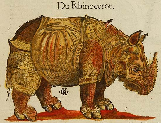 The rhinoceros of Dürer in the 1580 French edition of the Cosmographia of Sebastian Münster