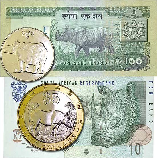 Rhinoceros on coins and banknotes