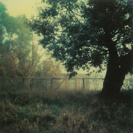 http://www.studiolum.com/wang/tarkovsky/05.jpg